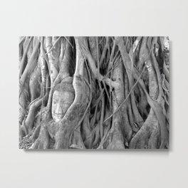 The Lost Buddha  Metal Print