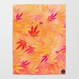 Citrus Cannabis Swirl Poster