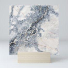Gray Marble Texure Mini Art Print