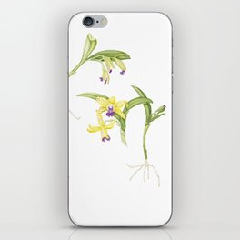 3 Stem flowering yellow and purple cattleya orchid iPhone Skin
