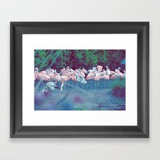 ♢ Pink Flamingos Framed Art Print