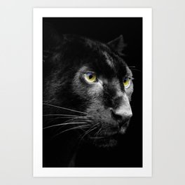 Dark Jaguar Art Print
