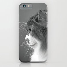 Whiskers Slim Case iPhone 6s