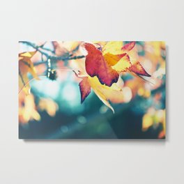 Break out the sweaters Metal Print