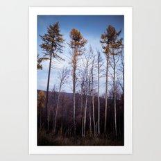 lll Art Print
