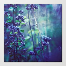 Morning Purples and Greens Canvas Print