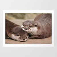 otters Art Prints featuring Otters 1 by Stephie Butler Photography
