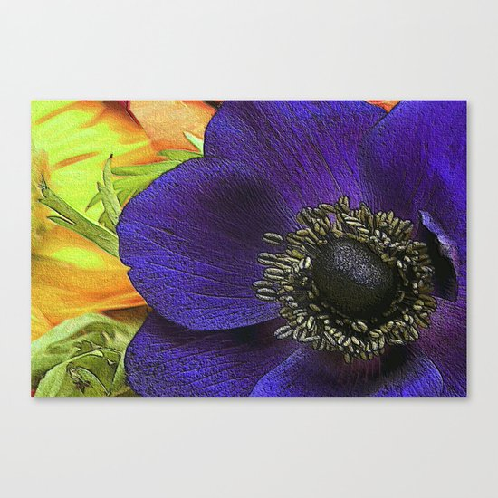 All of My Heart- Flower Power Anemone Canvas Print