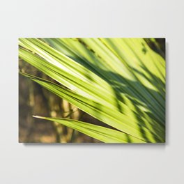 Swamp Life in New Orleans Metal Print