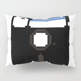 5¼-inch a BIG floppy Pillow Sham