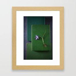 Crocus on Green Framed Art Print