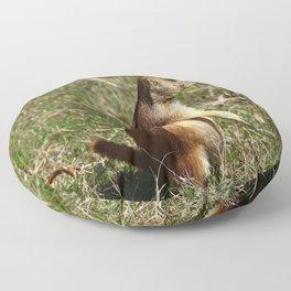 Black-tailed Prairie Dog Pose Floor Pillow