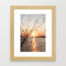 all fired up Framed Art Print