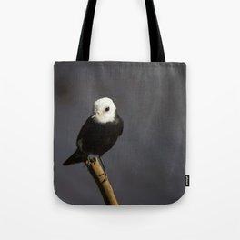 Birds from Pantanal Freirinha Tote Bag