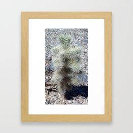 CHOLLA CACTUS Framed Art Print