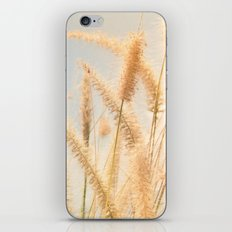 Warm wind iPhone & iPod Skin