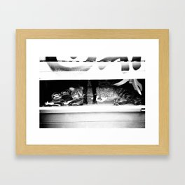 WINDOW KATZ Framed Art Print