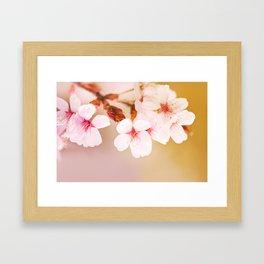 Blooming fairy cherry tree Framed Art Print