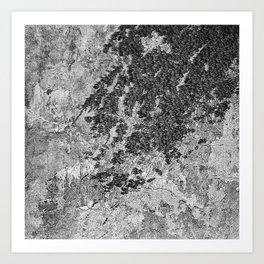 nature balack and white Art Print