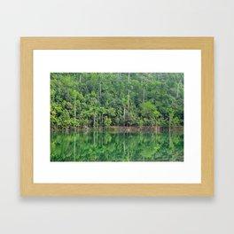 Lush Oasis Framed Art Print