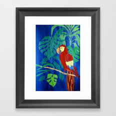 Il Pappagallo Felice (The Happy Parrot) Framed Art Print