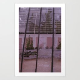Broken greenhouse Art Print