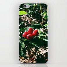 Spider Fruit iPhone Skin