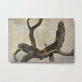 On Wings High Metal Print