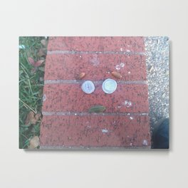Appearance Metal Print