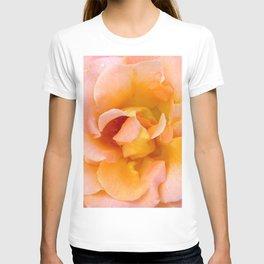 Orange ,Rosa Rose T-shirt