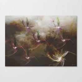 Dragon Flys Canvas Print