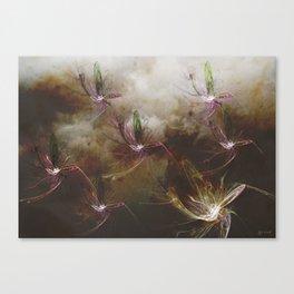Dragon Flys Canvas Print