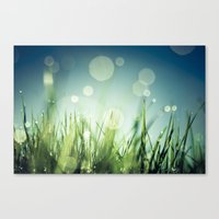 grass Canvas Prints featuring Grass  by Koka Koala