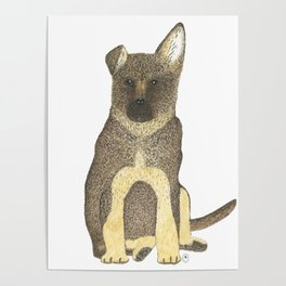 """Blue"" the German Shepherd Dog (GSD) Puppy Poster"