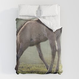 Bella's Filly and a Friend Comforters