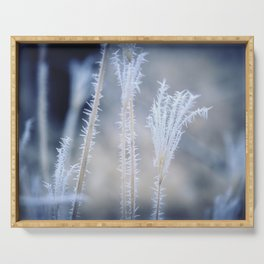 Cold Hoarfrost on the weeds in the winter Serving Tray