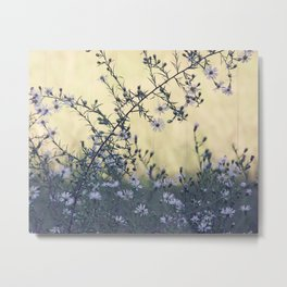 Wild Asters Botanical Metal Print