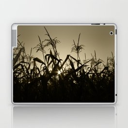 Peek-a-boo! Laptop & iPad Skin