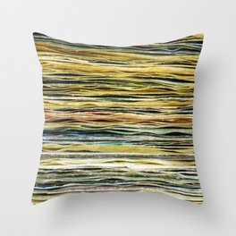 WHAT A RECORD Throw Pillow