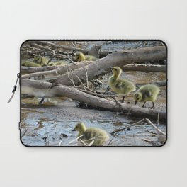 Goslings trying to climb over Sticks Laptop Sleeve