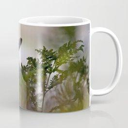 Little lamb Coffee Mug