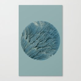 Meditations - Earth Canvas Print