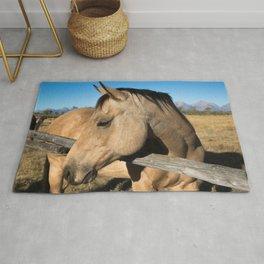 Shy - Horse Plays Coy in Western Wyoming Rug