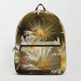 Fynbos Treasures Backpack
