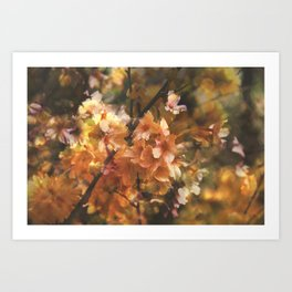 Double Exposed Blossom 2 Art Print