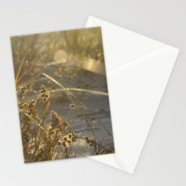 Even pain is glorified by the sun Stationery Cards