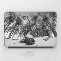 beaver iPad Cases featuring Beaver Hill  by Diego Zalduondo