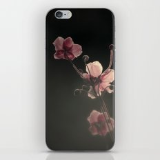 THE FIRST LIGHT iPhone & iPod Skin