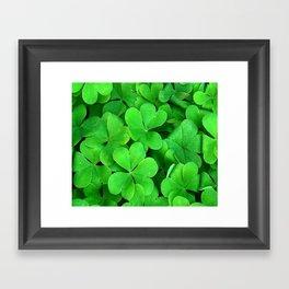 Lucky Four Leaf Clover Framed Art Print