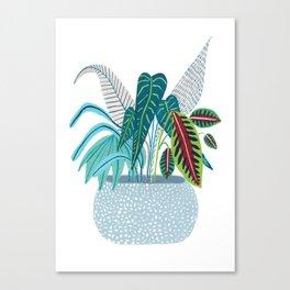Jungle in a Pot Canvas Print